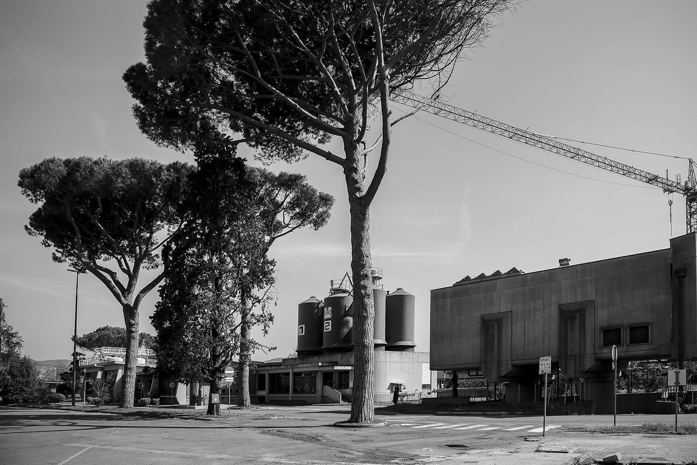 Macherelli MassimoAnconella Firenze-Macherelli Massimo5